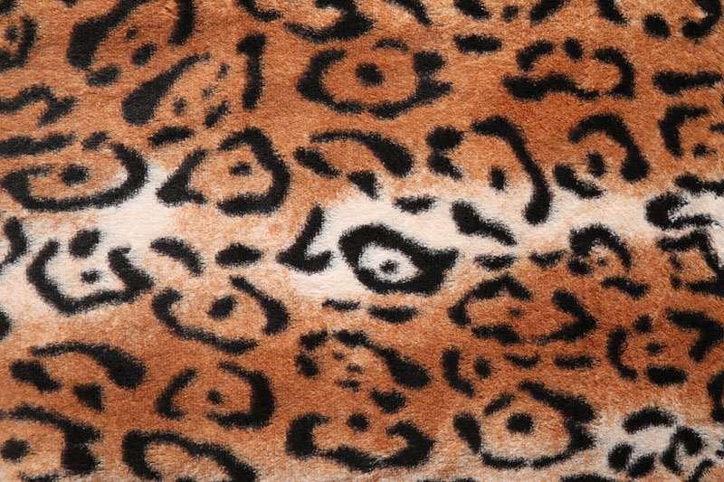 bronze_Leopard